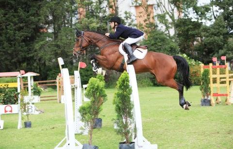 Seis campos para practicar equitación 032cd4af2cd5
