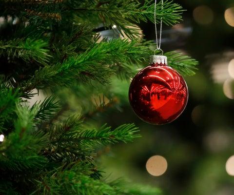 Arboles de navidad pepe ganga bogota