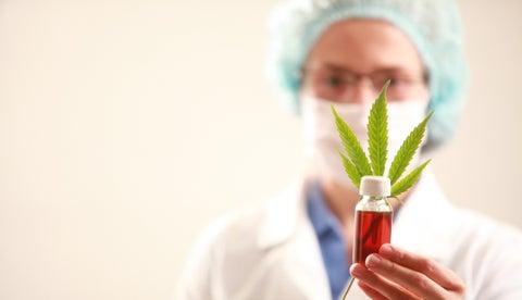Cannabis medicinal y el ejemplo canadiense