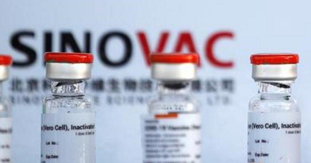 Sinovac ha entregado 260 millones de dosis de su vacuna para covid-19 en el mundo